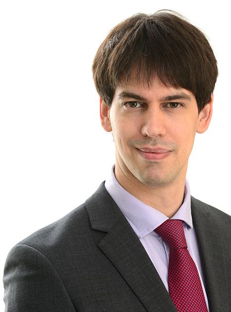 David Lane, Partner