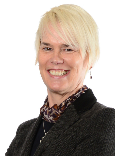Dilys Taylor, Senir Associate