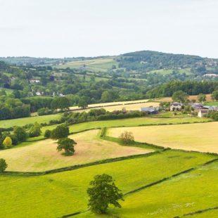 field grass countryside